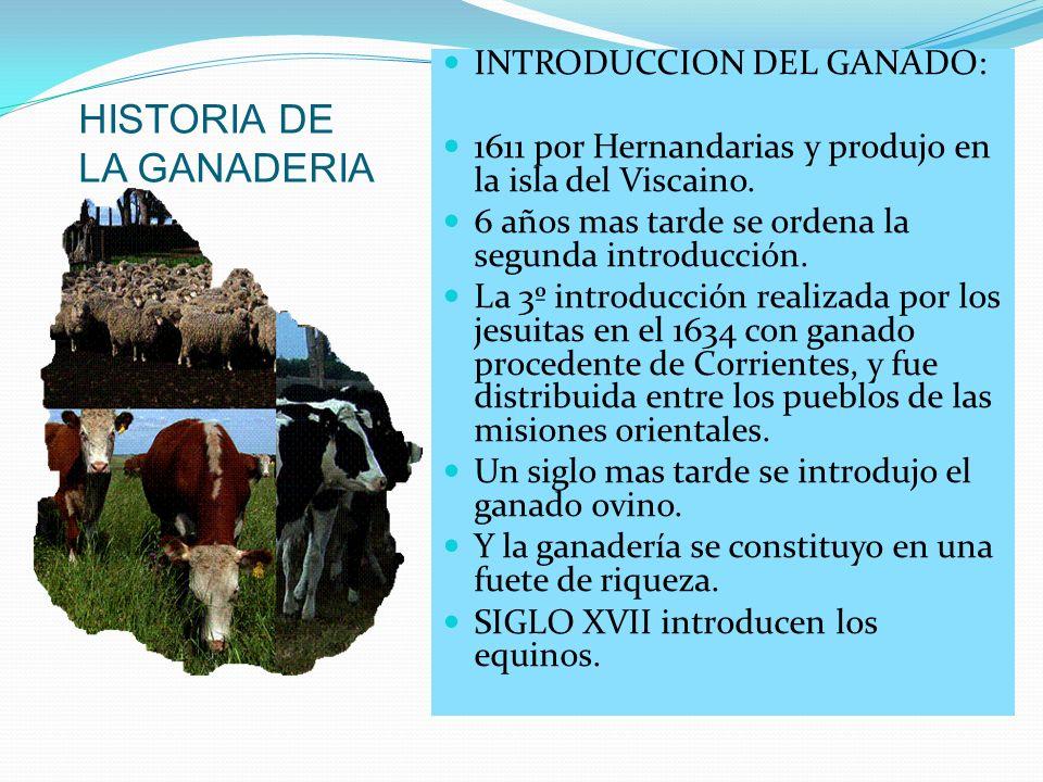 HISTORIA DE LA GANADERIA