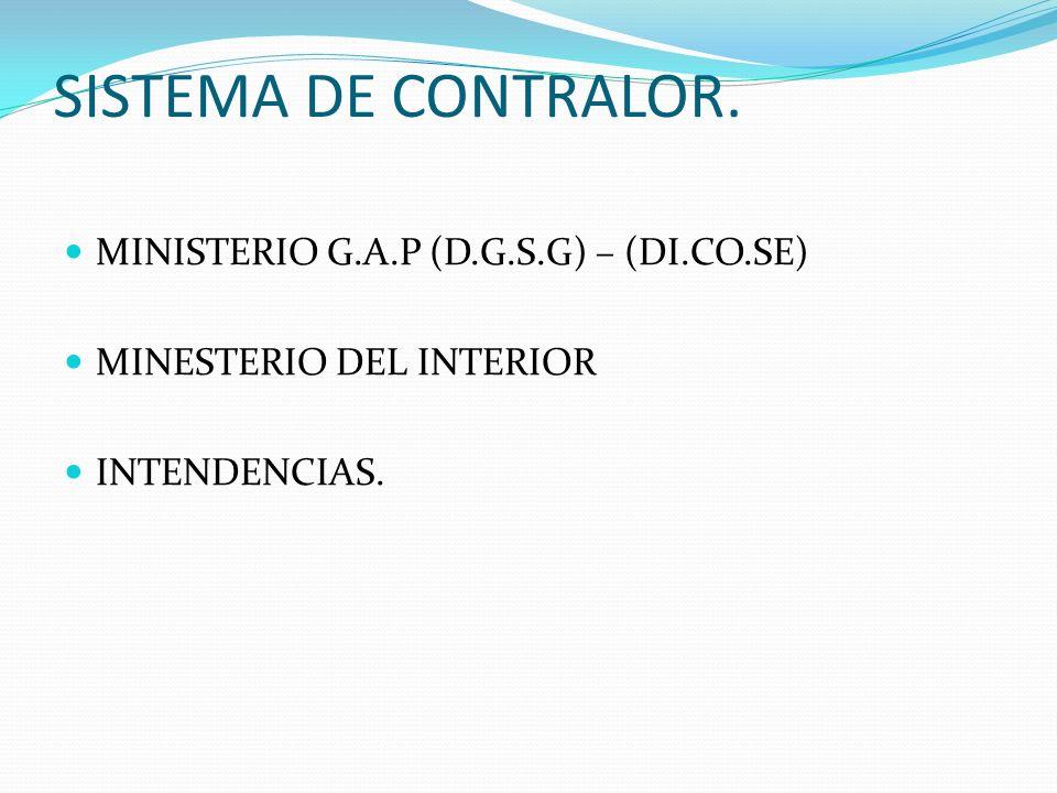 SISTEMA DE CONTRALOR. MINISTERIO G.A.P (D.G.S.G) – (DI.CO.SE)