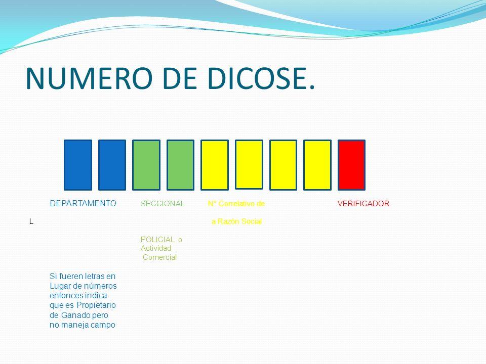 NUMERO DE DICOSE. DEPARTAMENTO SECCIONAL N° Correlativo de VERIFICADOR