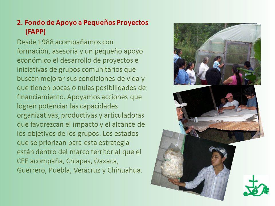 2. Fondo de Apoyo a Pequeños Proyectos (FAPP)