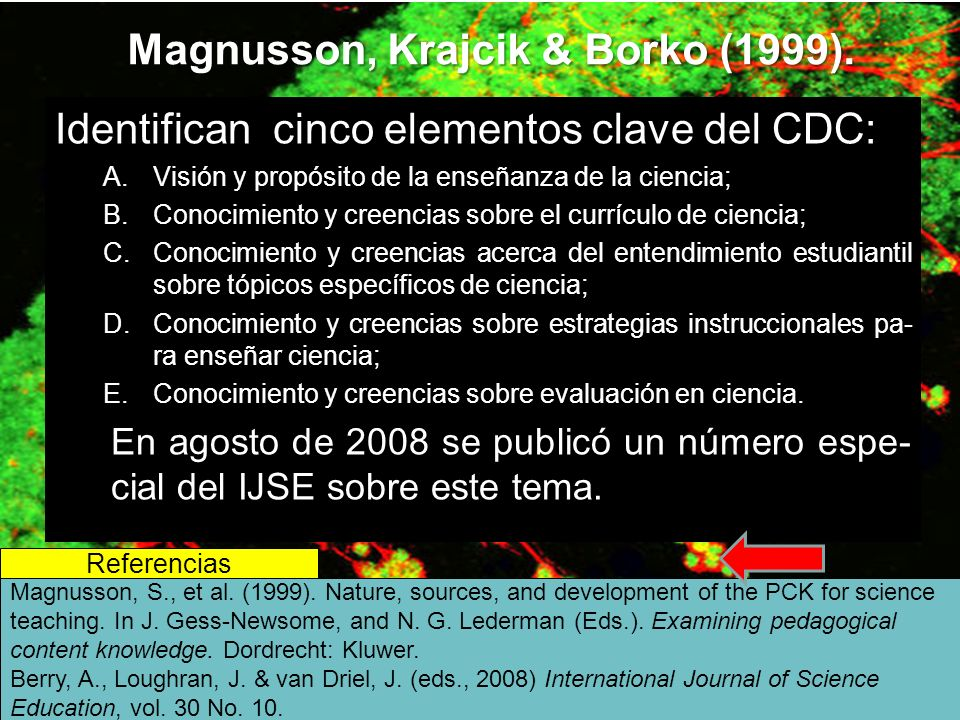 Magnusson, Krajcik & Borko (1999).