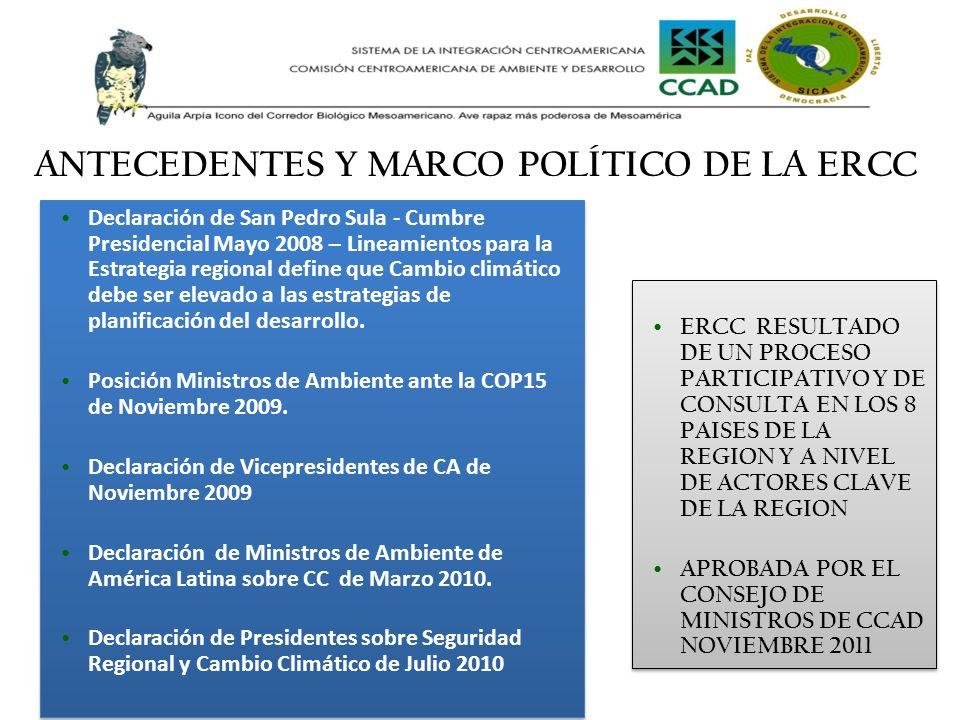 ANTECEDENTES Y MARCO POLÍTICO DE LA ERCC