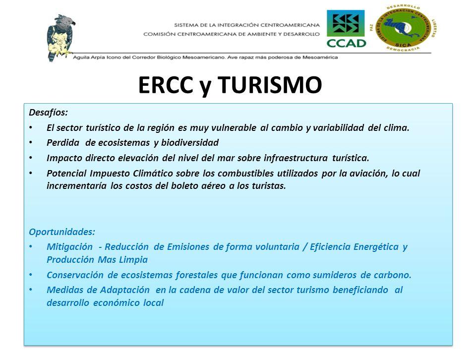 ERCC y TURISMO Desafíos: