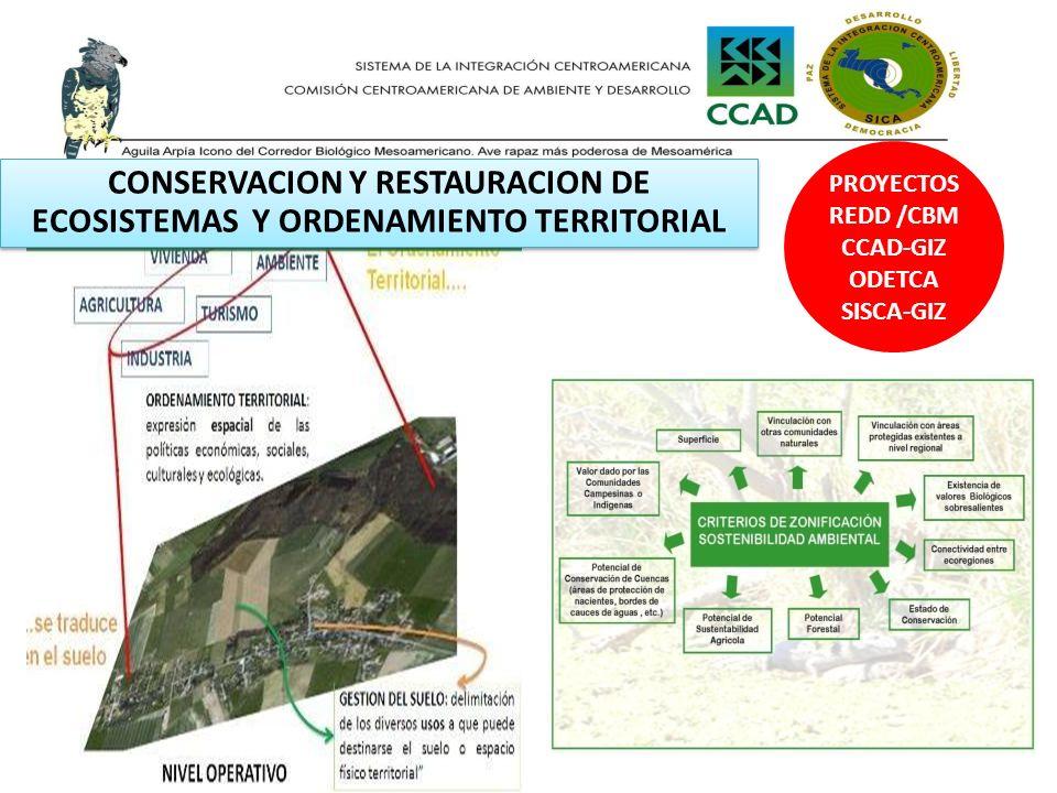 CONSERVACION Y RESTAURACION DE ECOSISTEMAS Y ORDENAMIENTO TERRITORIAL