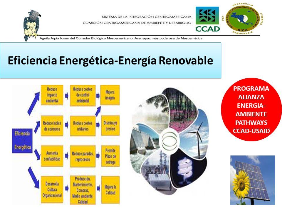 Eficiencia Energética-Energía Renovable
