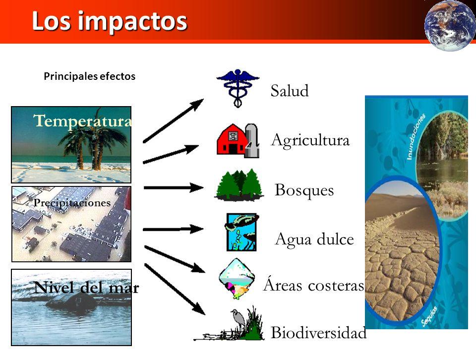 Los impactos Salud Agricultura Temperatura Bosques Agua dulce