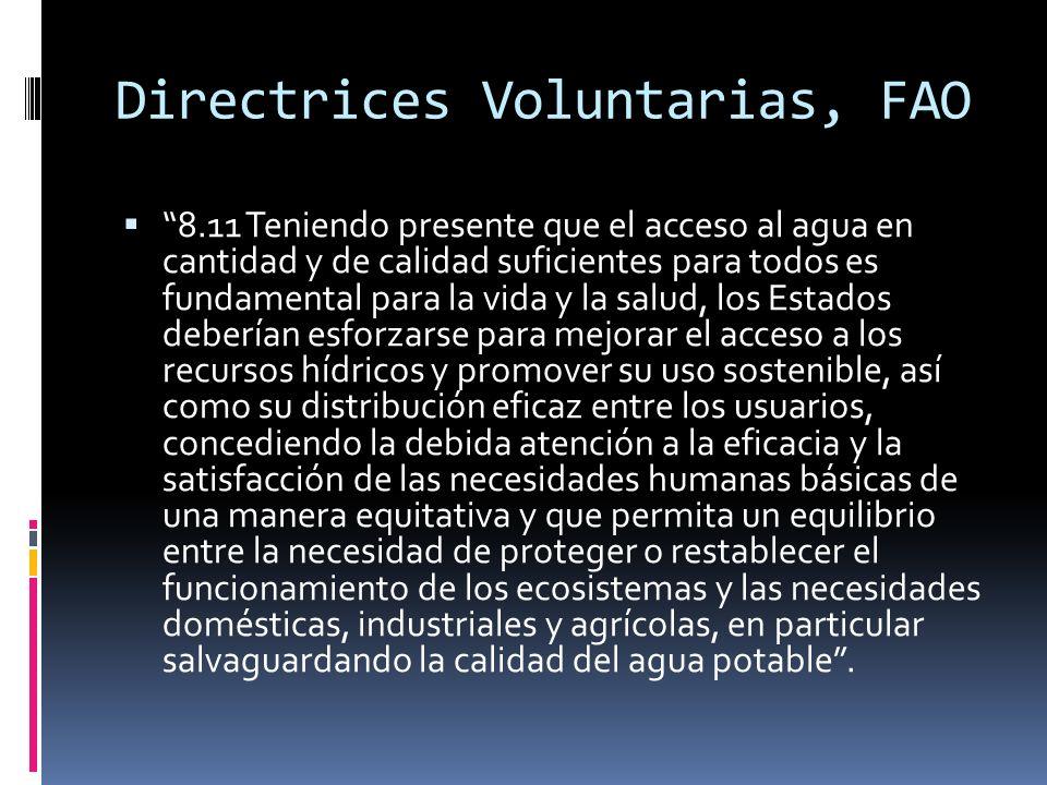 Directrices Voluntarias, FAO