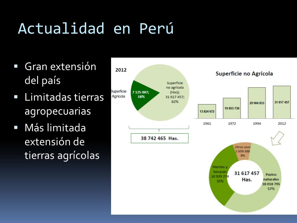 Actualidad en Perú Gran extensión del país