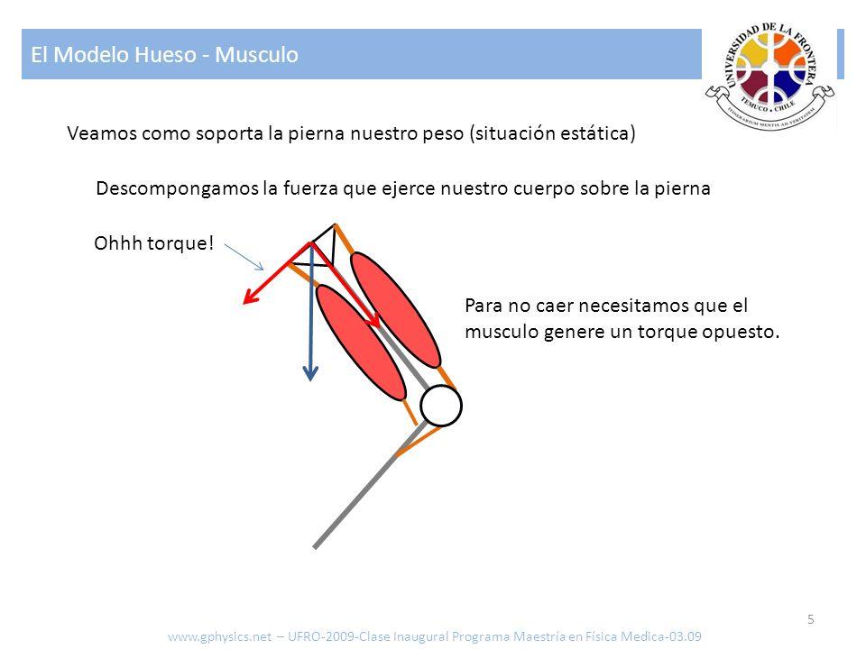 El Modelo Hueso - Musculo