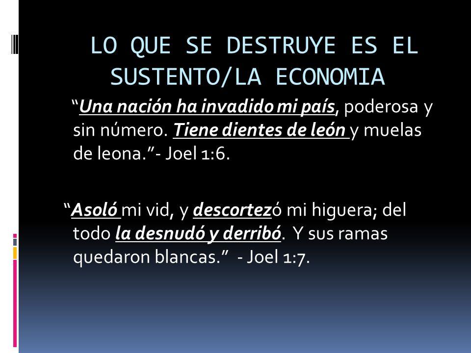 LO QUE SE DESTRUYE ES EL SUSTENTO/LA ECONOMIA