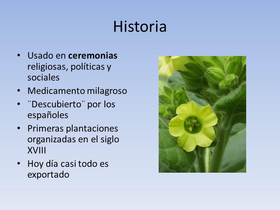 Historia Usado en ceremonias religiosas, políticas y sociales