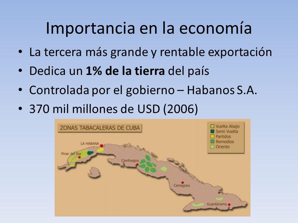 Importancia en la economía