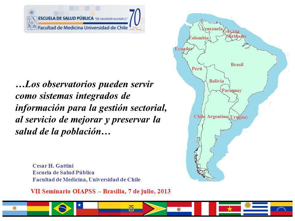 VII Seminario OIAPSS – Brasilia, 7 de julio, 2013