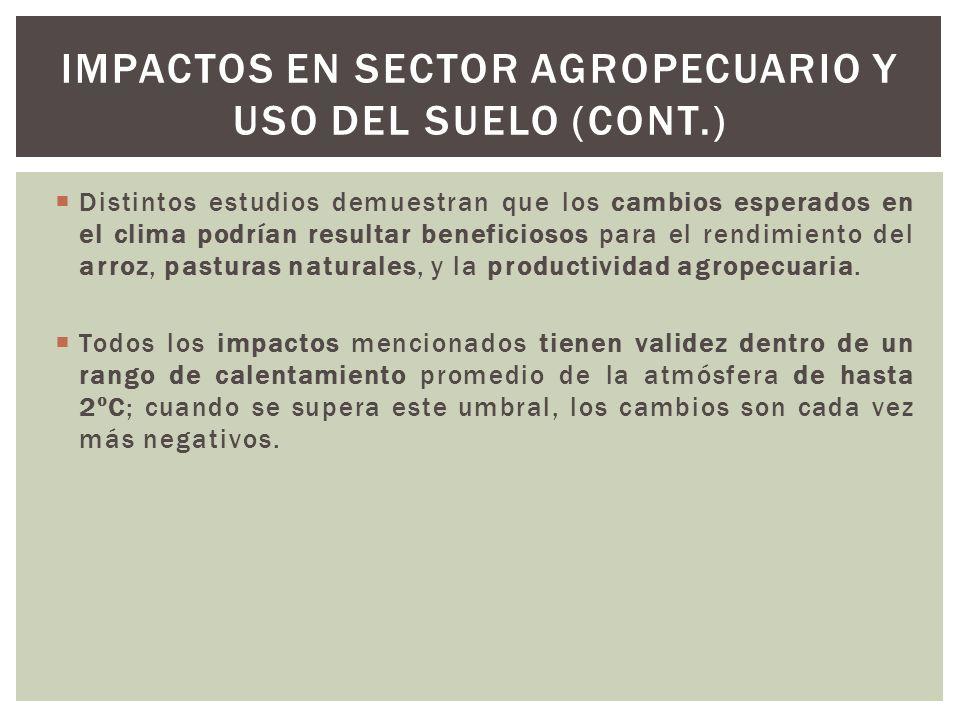 Impactos en sector agropecuario y uso del suelo (cont.)