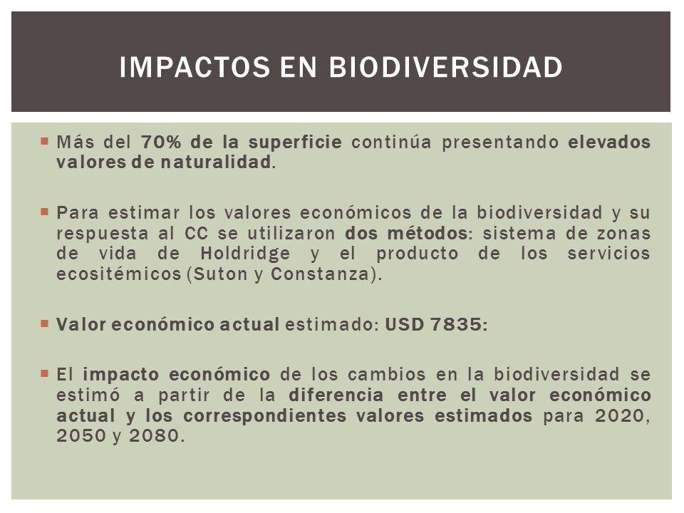 Impactos en biodiversidad