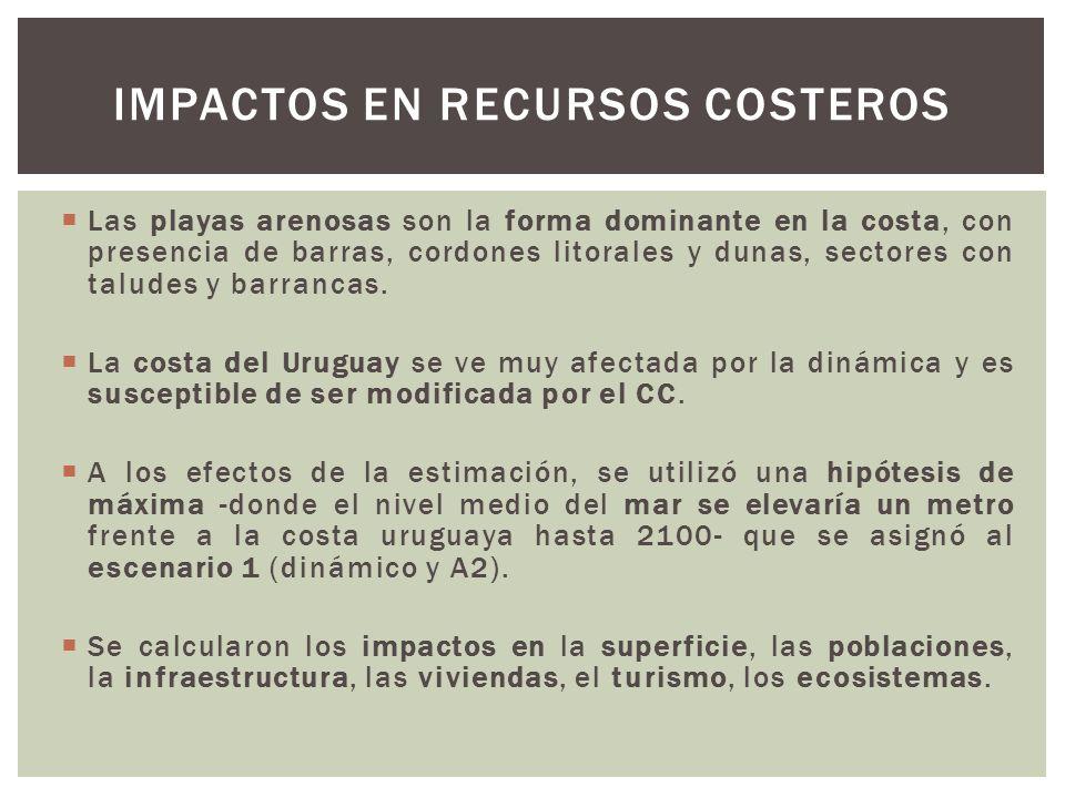 Impactos en recursos costeros