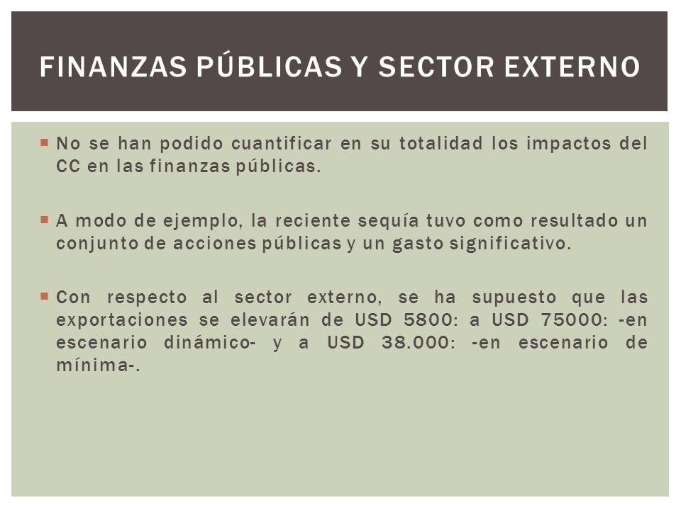Finanzas públicas y sector externo