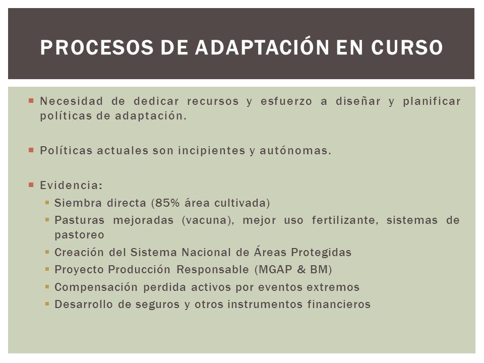 Procesos de adaptación en curso