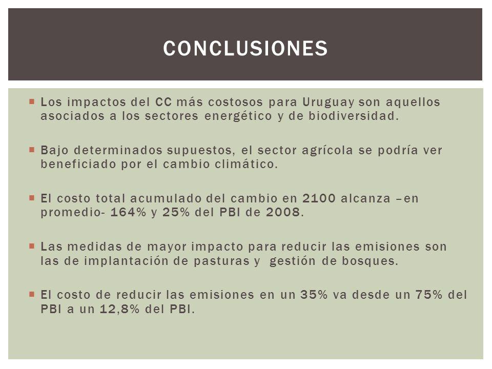 conclusiones Los impactos del CC más costosos para Uruguay son aquellos asociados a los sectores energético y de biodiversidad.