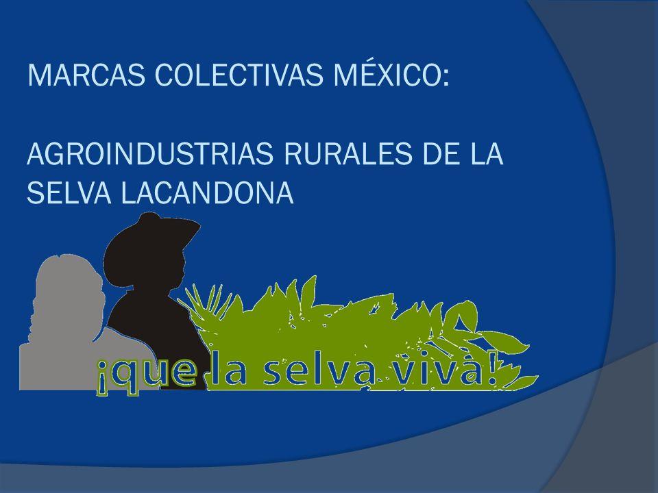 MARCAS COLECTIVAS MÉXICO: AGROINDUSTRIAS RURALES DE LA SELVA LACANDONA