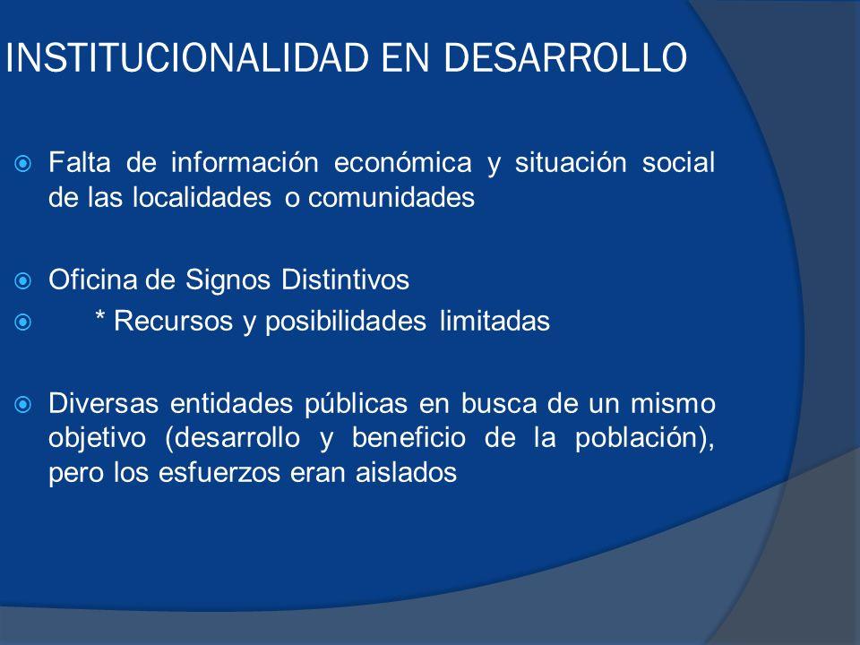INSTITUCIONALIDAD EN DESARROLLO