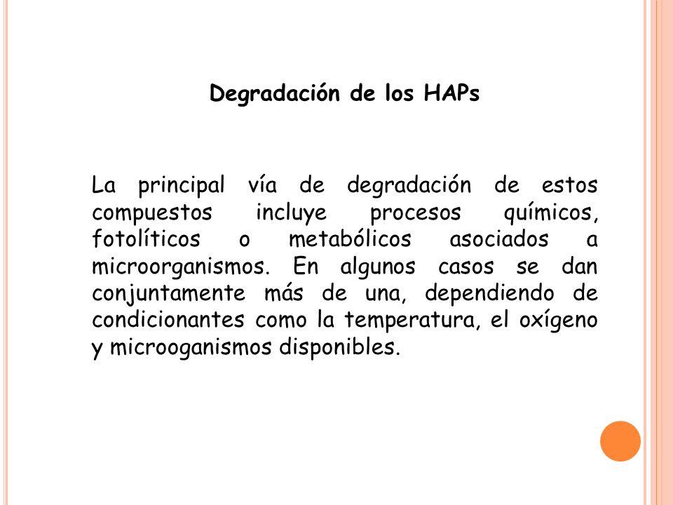 Degradación de los HAPs