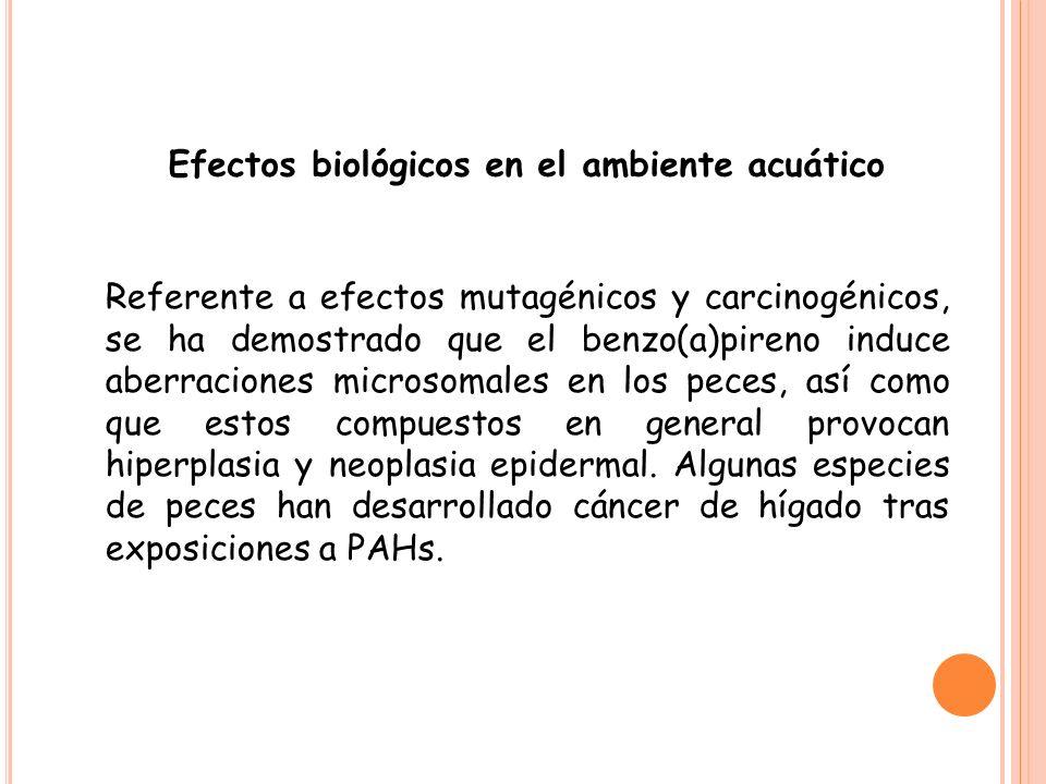 Efectos biológicos en el ambiente acuático