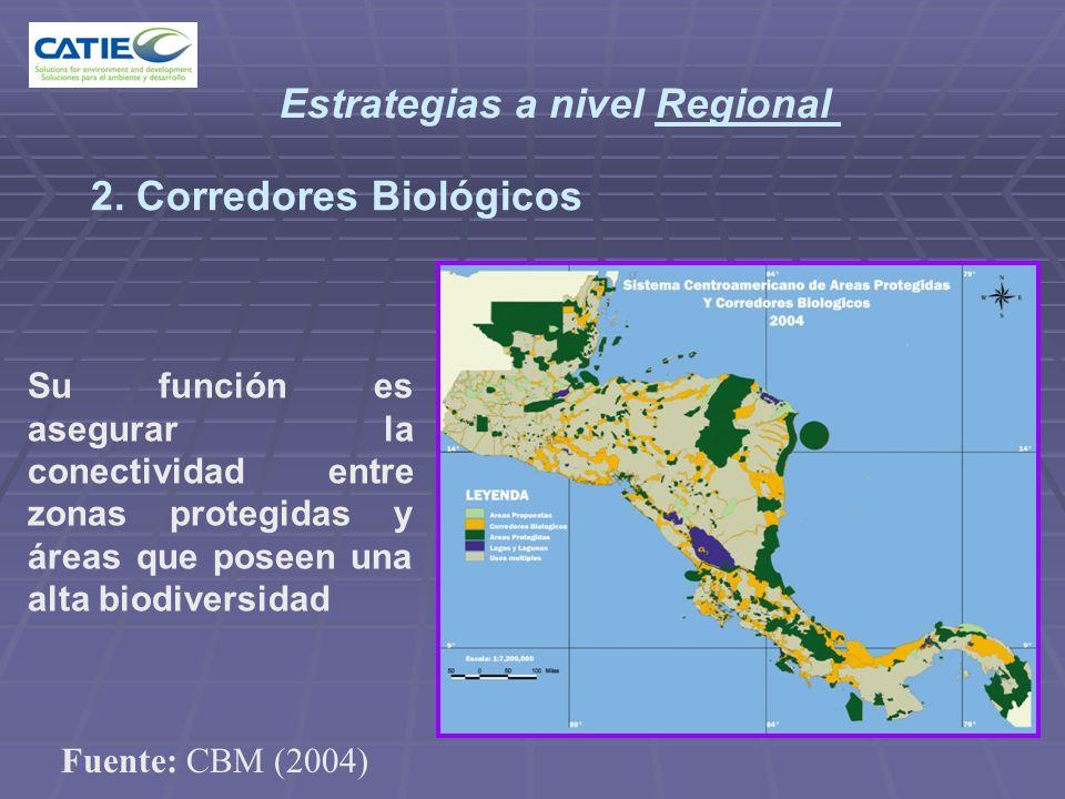 Estrategias a nivel Regional 2. Corredores Biológicos