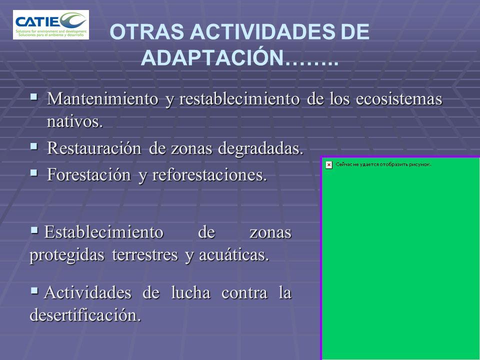 OTRAS ACTIVIDADES DE ADAPTACIÓN……..