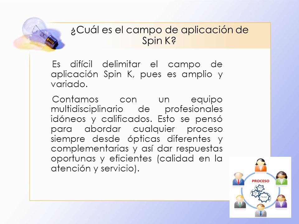 ¿Cuál es el campo de aplicación de Spin K