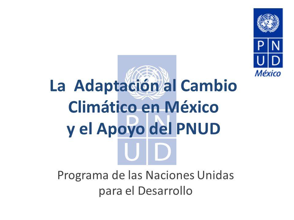 La Adaptación al Cambio Climático en México y el Apoyo del PNUD