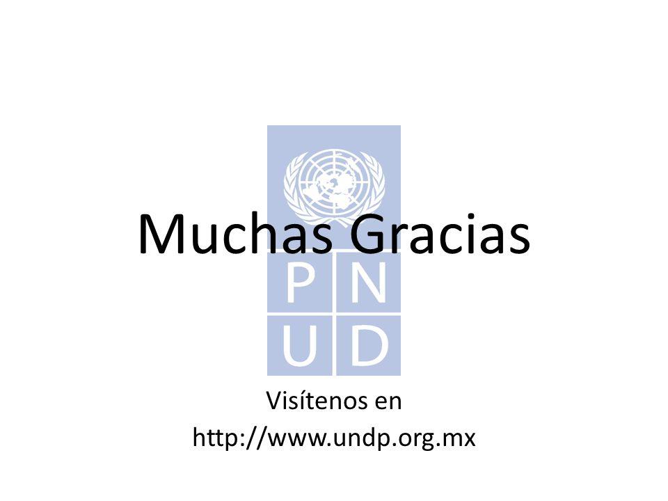 Muchas Gracias Visítenos en http://www.undp.org.mx