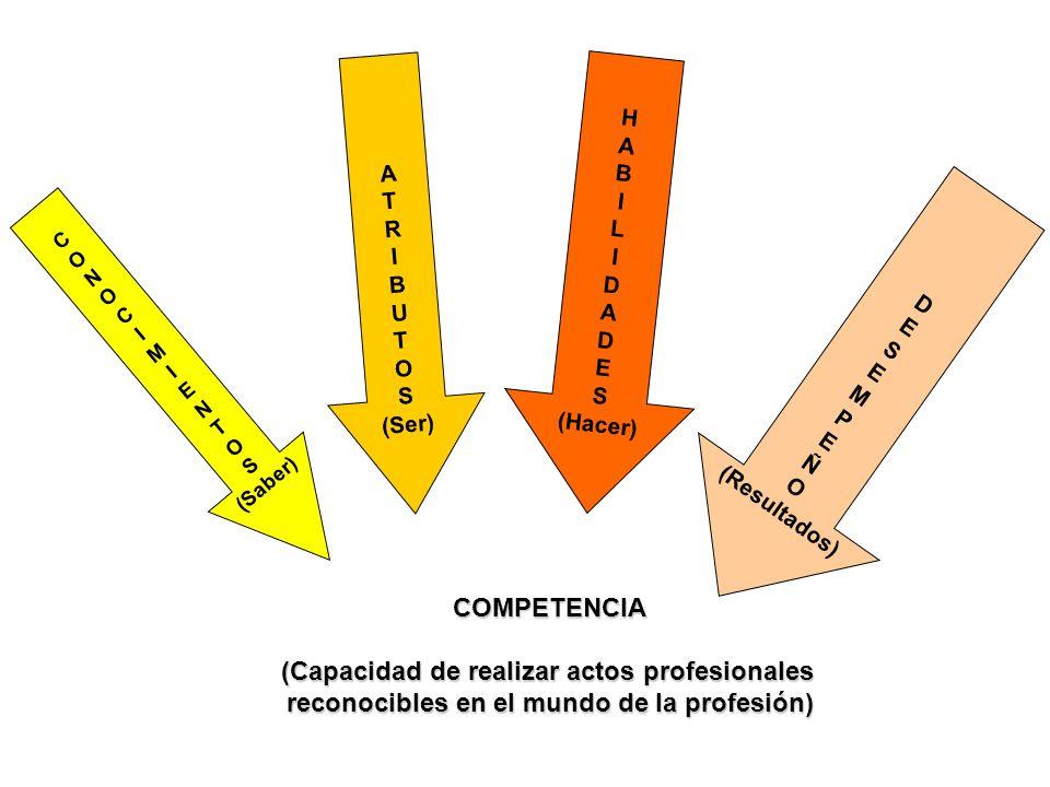 (Capacidad de realizar actos profesionales