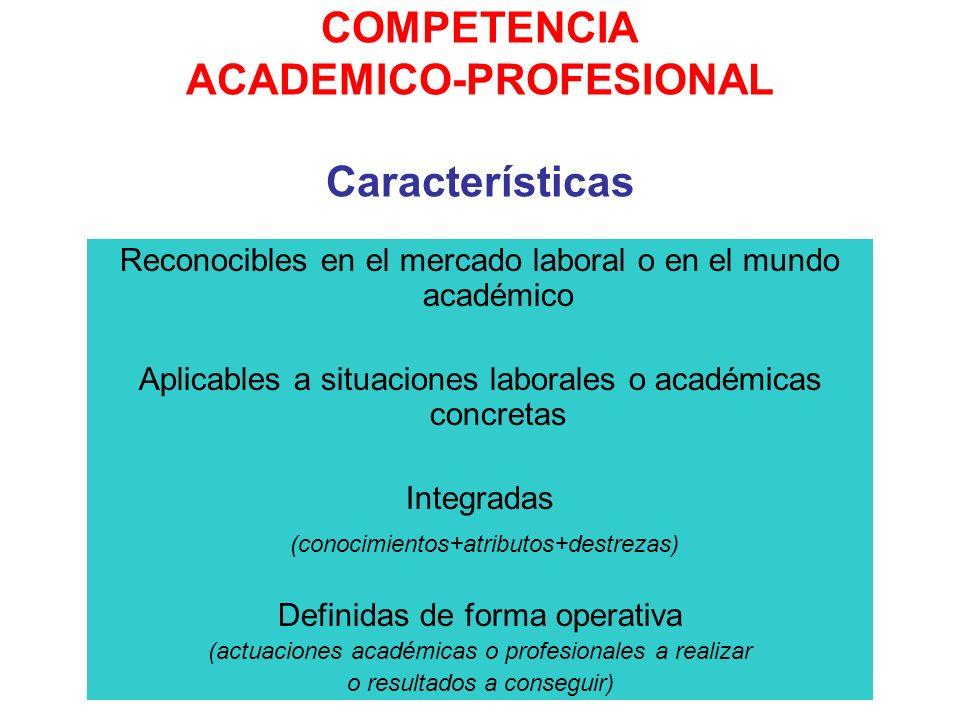 COMPETENCIA ACADEMICO-PROFESIONAL Características