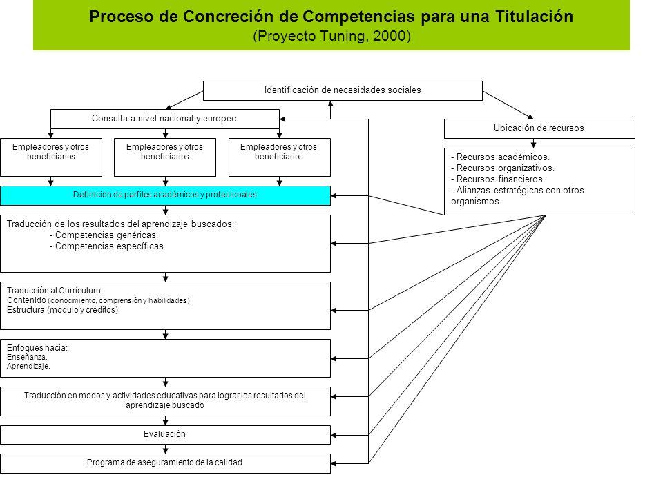 Proceso de Concreción de Competencias para una Titulación (Proyecto Tuning, 2000)
