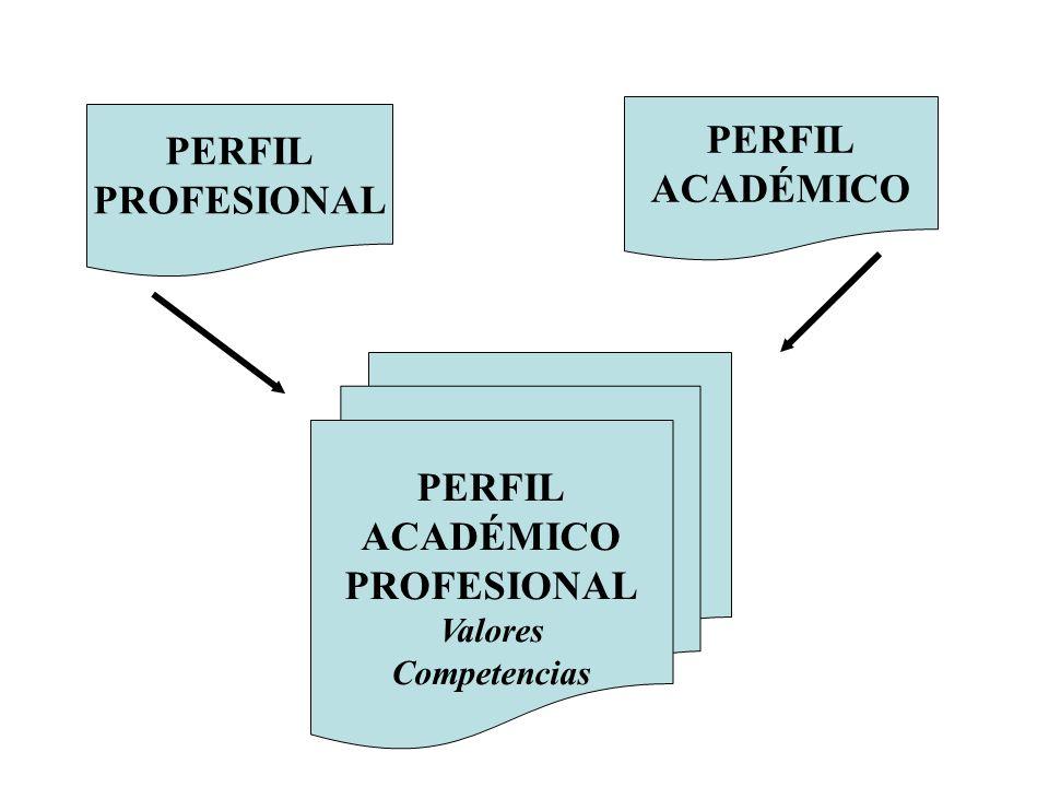 PERFIL ACADÉMICO PERFIL PROFESIONAL PERFIL ACADÉMICO PROFESIONAL