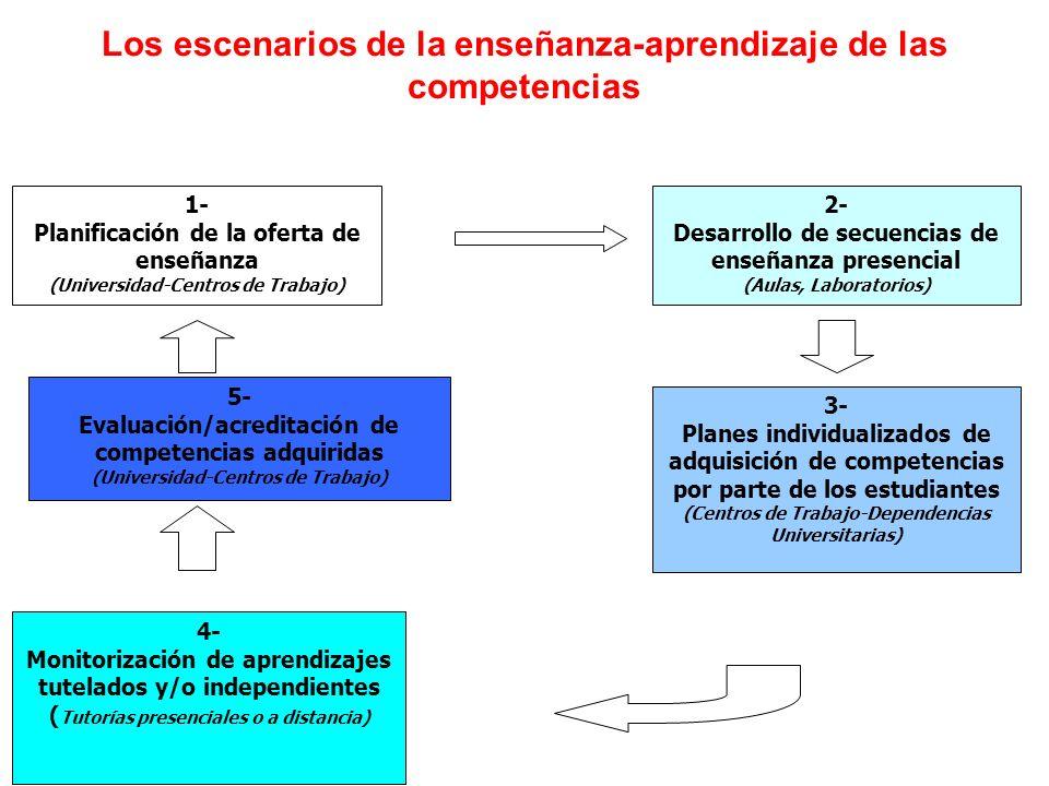 Los escenarios de la enseñanza-aprendizaje de las competencias