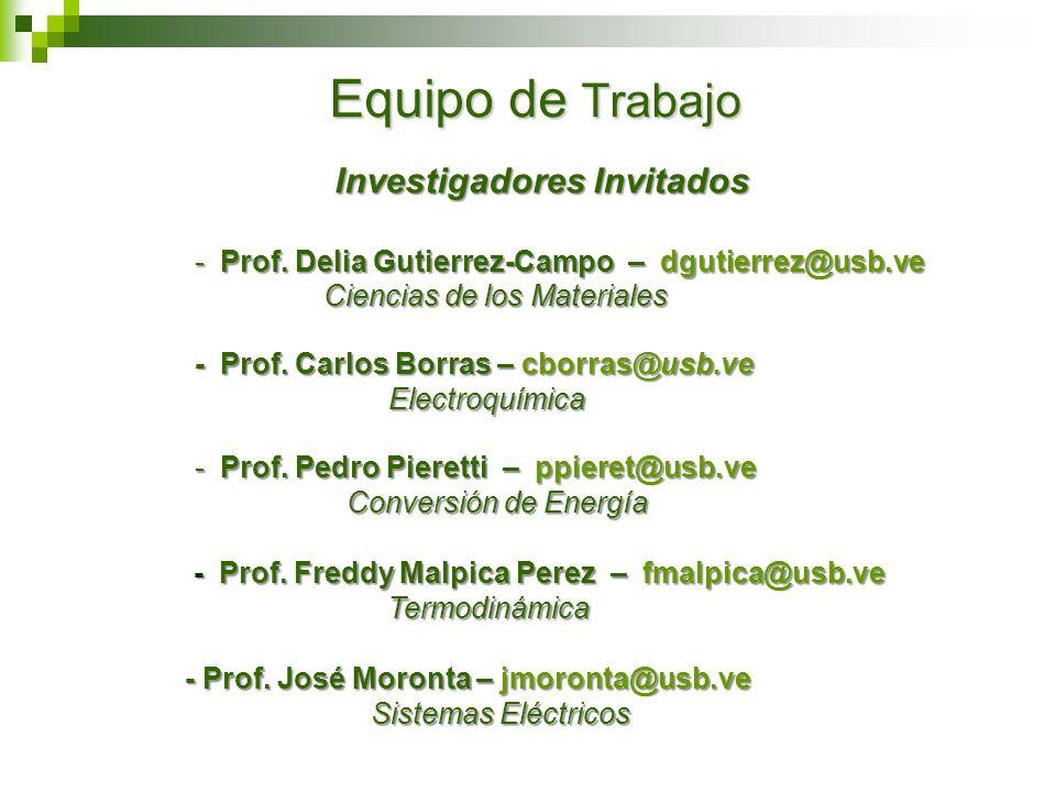 Investigadores Invitados