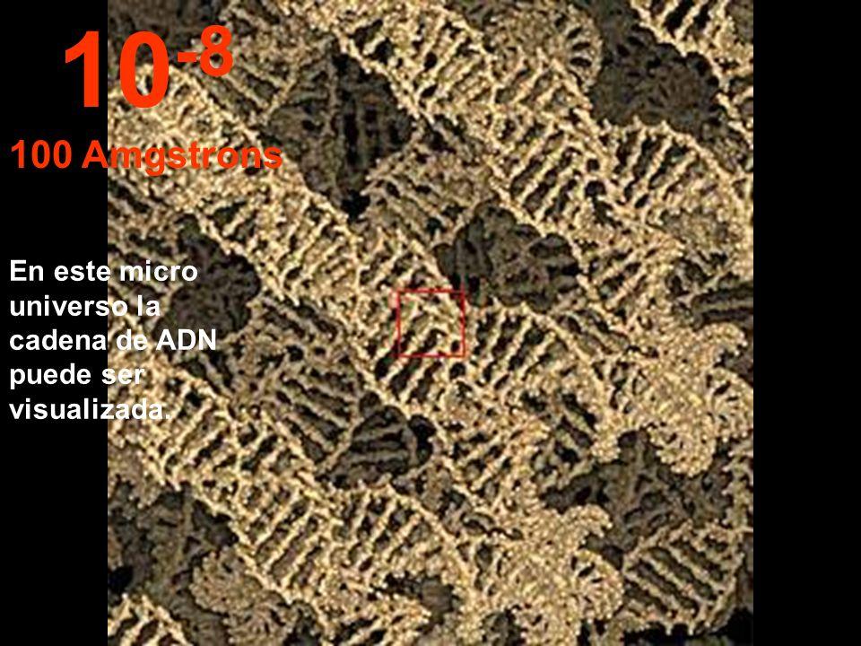 10-8 100 Amgstrons En este micro universo la cadena de ADN puede ser visualizada.