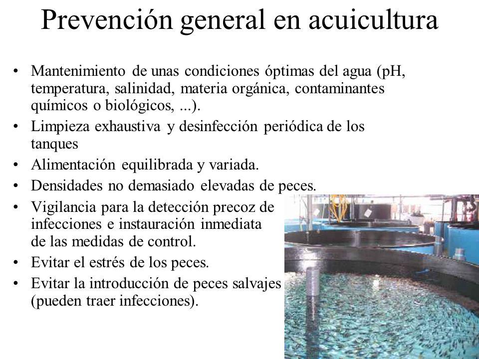 Prevención general en acuicultura