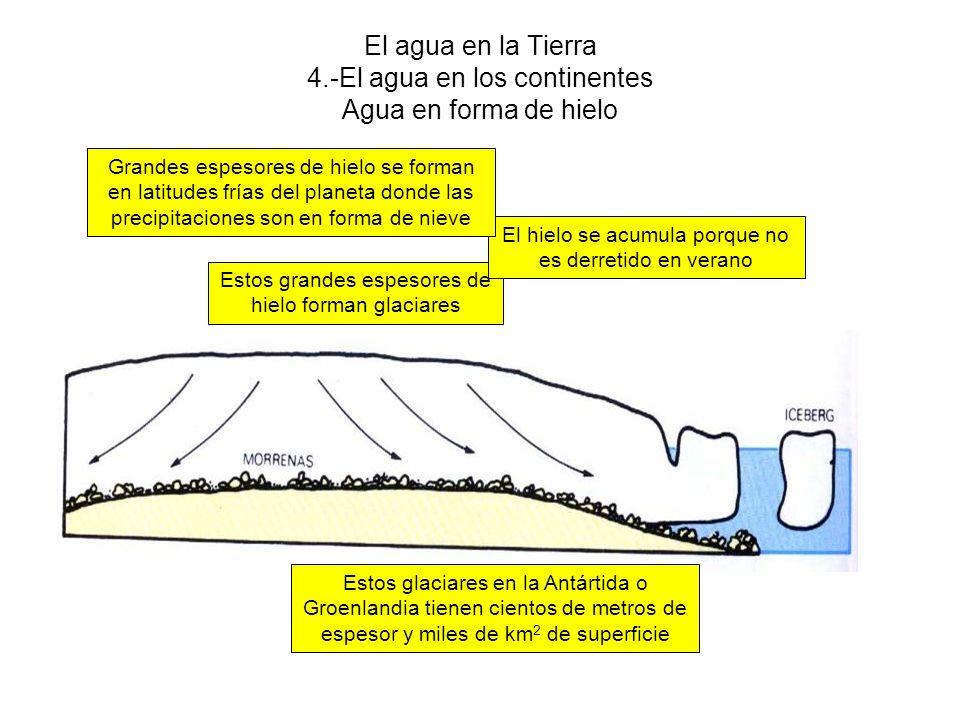 El agua en la Tierra 4.-El agua en los continentes Agua en forma de hielo