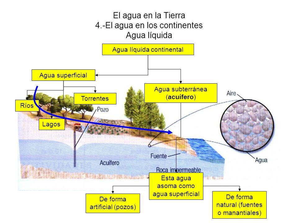 El agua en la Tierra 4.-El agua en los continentes Agua líquida