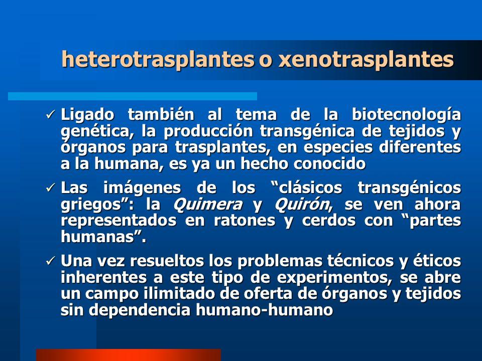 heterotrasplantes o xenotrasplantes