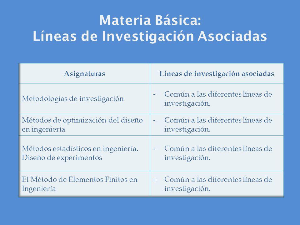 Materia Básica: Líneas de Investigación Asociadas