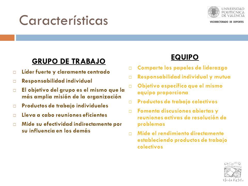 Características EQUIPO GRUPO DE TRABAJO