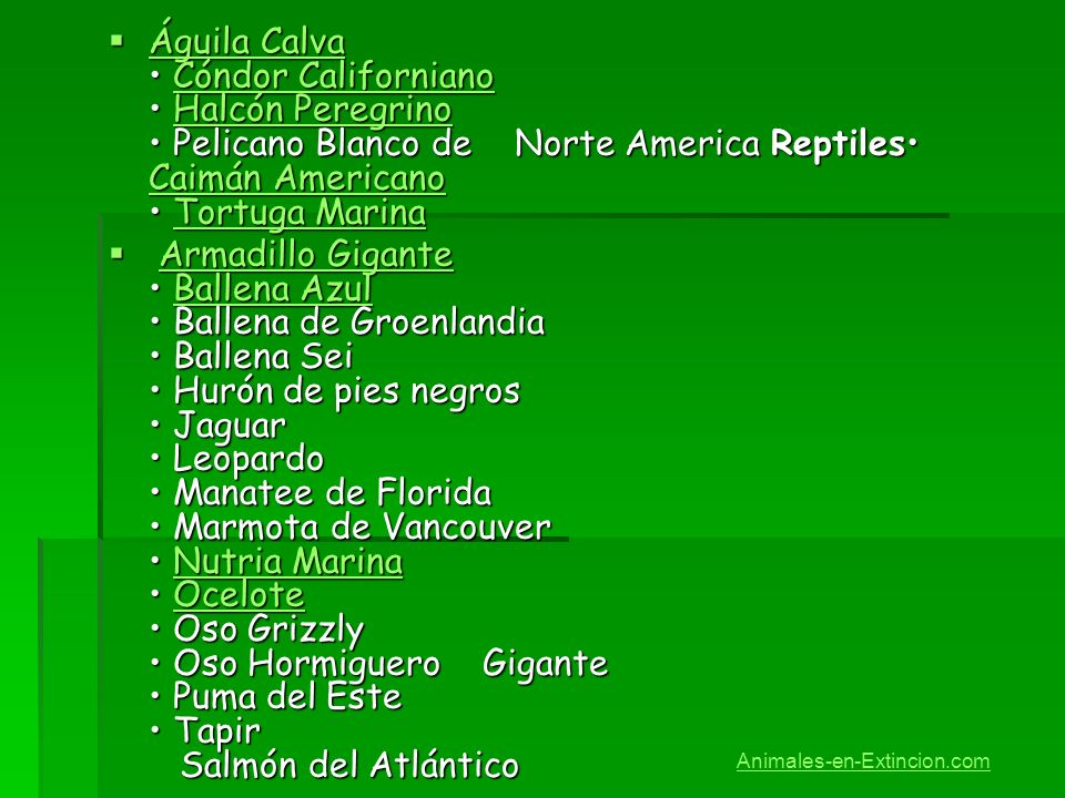 Águila Calva • Cóndor Californiano • Halcón Peregrino • Pelicano Blanco de Norte America Reptiles• Caimán Americano • Tortuga Marina