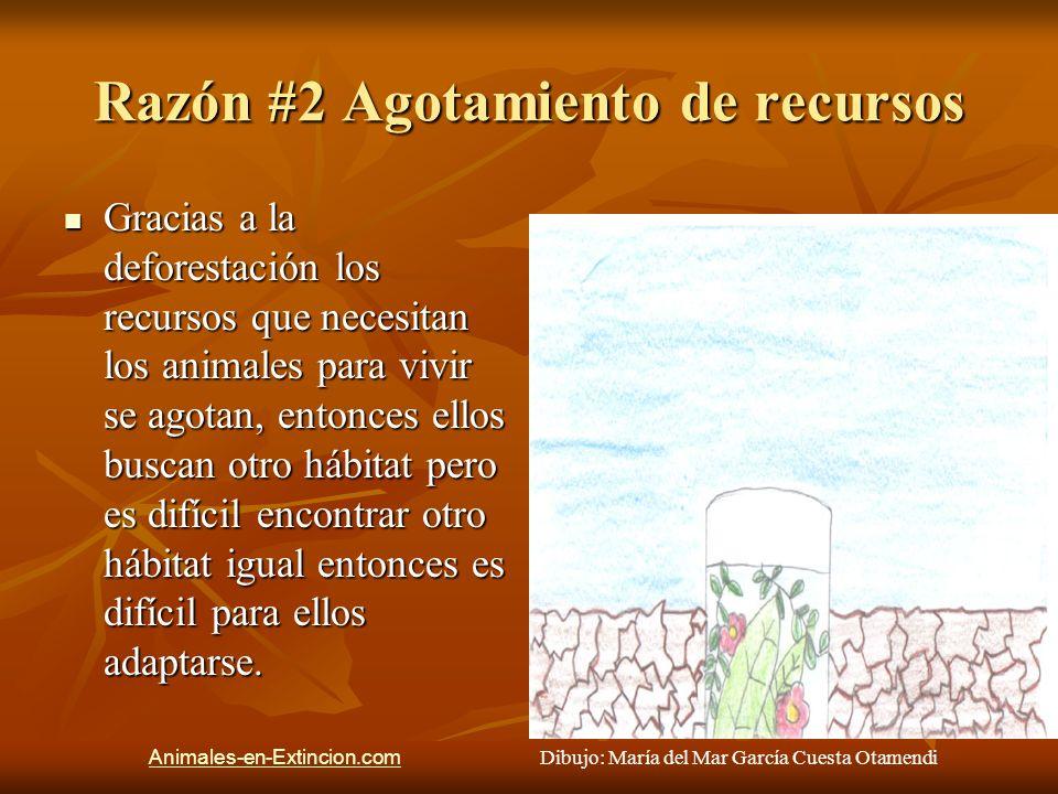Razón #2 Agotamiento de recursos