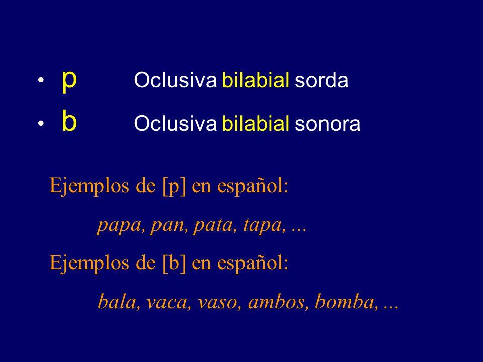 p Oclusiva bilabial sorda