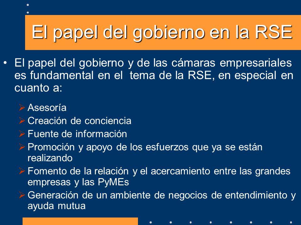 El papel del gobierno en la RSE