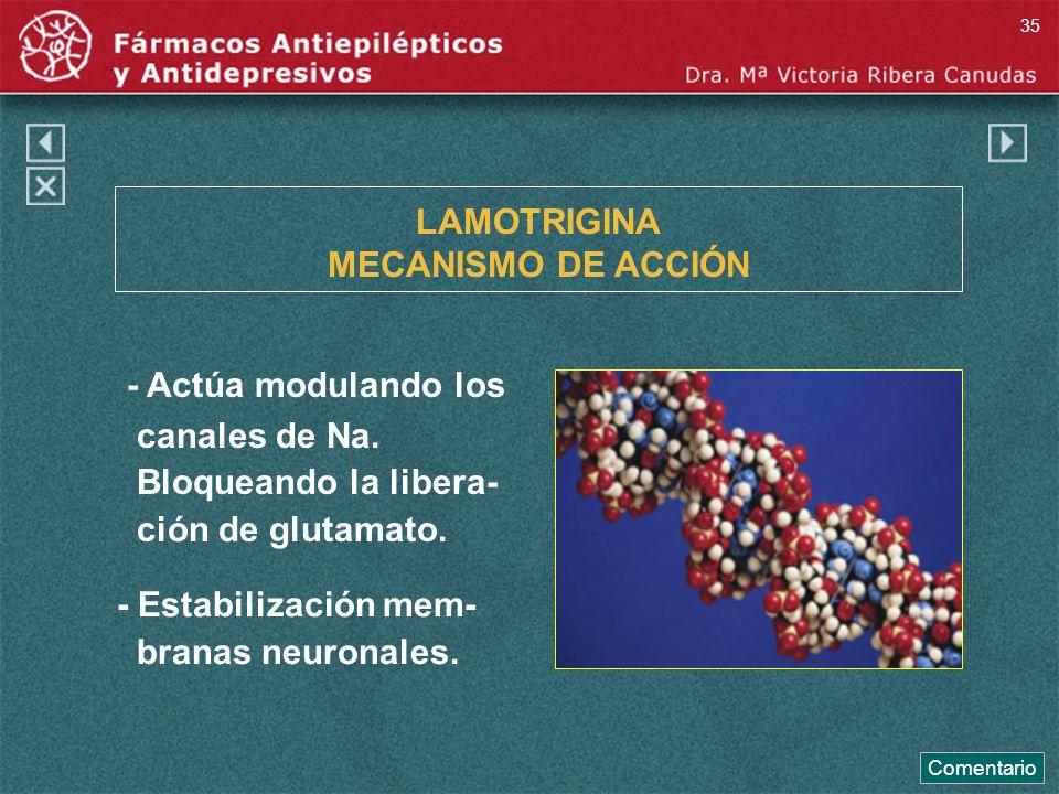 LAMOTRIGINA MECANISMO DE ACCIÓN